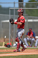 St. Louis Cardinals catcher Carson Kelly (29) during a minor league spring training game against the Miami Marlins on March 31, 2015 at the Roger Dean Complex in Jupiter, Florida.  (Mike Janes/Four Seam Images)