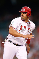 Albert Pujols #5 of the Los Angeles Angels runs the bases during a game against the Chicago White Sox at Angel Stadium on September 22, 2012 in Anaheim, California. Los Angeles defeated Chicago 4-2. (Larry Goren/Four Seam Images)