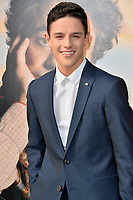 """LOS ANGELES, USA. January 11, 2020: Harry Collet at the premiere of """"Dolittle"""" at the Regency Village Theatre.<br /> Picture: Paul Smith/Featureflash"""