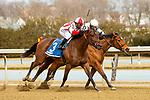 MAR 06, 2021 :  Search Results with Javier Castellano  aboard, wins the Busher Invitational, for 3 year old fillies, earning 50 Kentucky Oaks points at Aqueduct Racetrack, Ozone Park, NY. Sue Kawczynski-Eclipse Sportswire-CSM