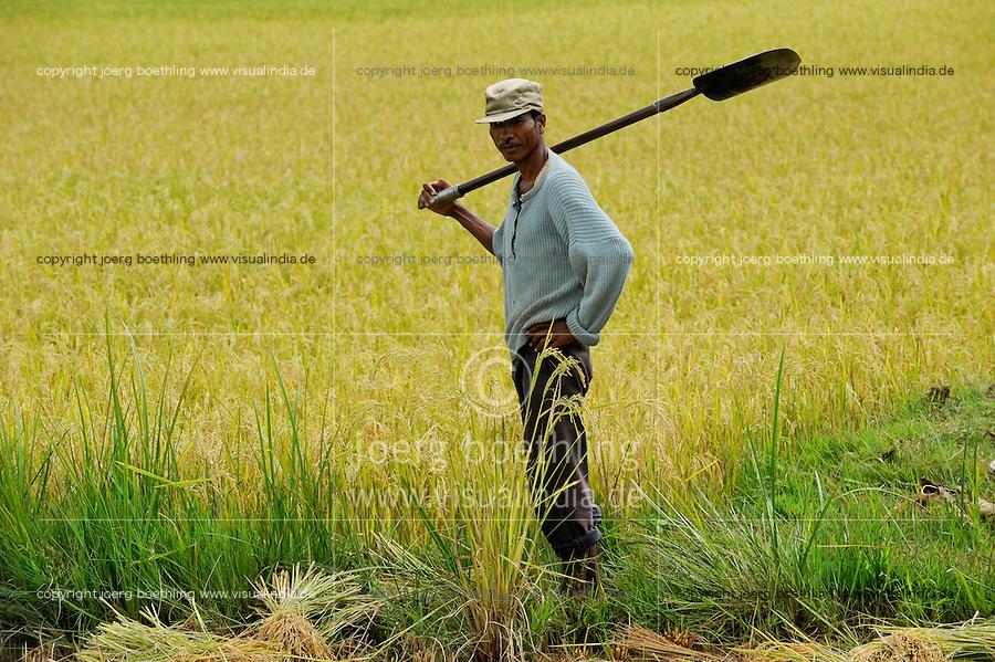MADAGASCAR Morarano , SRI system of rice intensification developed by french jesuit Henri de Laulanie to increase yield and reduce water usage, portrait of farmer in paddy field /MADAGASKAR Morarano , Bauer im Reisfeld , SRI System zur Intensivierung des Reisanbau , wurde in den 1980er Jahren auf Madagaskar vom franzoesischen Jesuit Henri de Laulanie zur Steigerung der Ertraege und Senkung des Wasserverbrauch entwickelt, Bauern ernten Reis, der im 25 cm Abstand gepflanzt worden ist