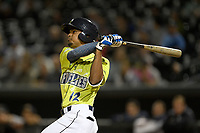 Right fielder Jose Miguel Medina (12) of the Columbia Fireflies bats in a game against the Charleston RiverDogs on Thursday, April 4, 2019, at Segra Park in Columbia, South Carolina. Charleston won, 2-1. (Tom Priddy/Four Seam Images)