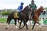 It's Tricky, ridden by Eddie Castro, in the Beldame Invitational Stakes (GI) at Belmont Park, in Elmont, New York on September 29, 2012.