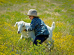 Cash catching the goat. At the ranch in San Luis Obispo, California