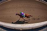 APRIL 5, 2014: California Chrome, ridden by Victor Espinoza wins the Santa Anita Derby at Santa Anita Park in Arcadia CA. Alex Evers/ESW/CSM
