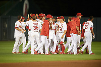 Springfield Cardinals left fielder Magneuris Sierra (29) high fives Sandy Alcantara (22) after a walk off base hit in the bottom of the ninth inning during a game against the Corpus Christi Hooks on May 30, 2017 at Hammons Field in Springfield, Missouri.  Springfield defeated Corpus Christi 4-3.  (Mike Janes/Four Seam Images)