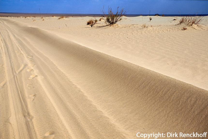 Dünen bei Nefta, Tunesien