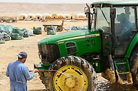 EGYPT, Farafra, potato farming in the desert, washing of tractor / AEGYPTEN, Farafra, United Farms, Kartoffelanbau in der Wueste, Traktor Waesche