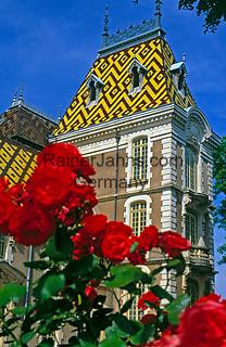 Frankreich, Burgund, Côte d'Or, Aloxe-Corton: Weingut und Schloss   France, Burgundy, Côte d'Or, Aloxe-Corton: vineyard and castle