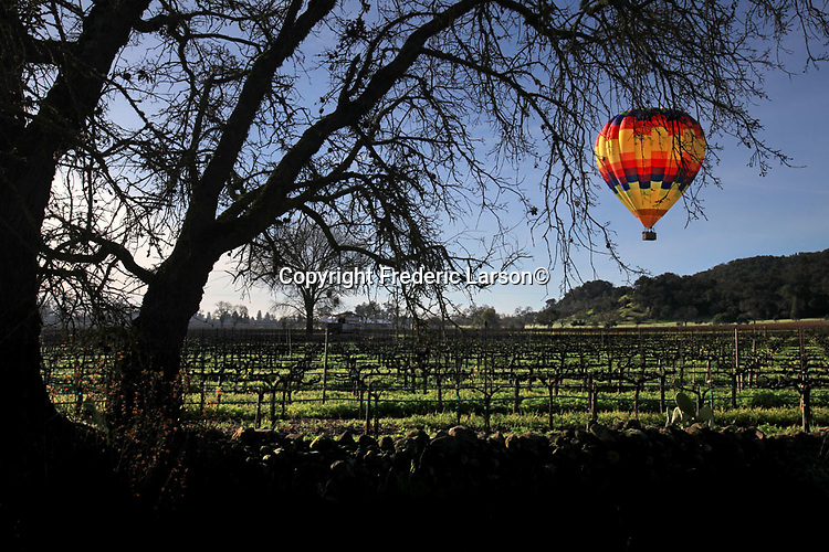 A hot air balloon sails over a vineyard in Napa Valley California.