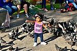 CAMPECHE MEXICO SHOOT