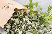 Himbeer-Blätter, getrocknete Himbeerblätter Ernte, Wilde Himbeere, Blatt, Blätter, Rubus idaeus, Raspberry, Rasp-berry, La framboise
