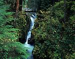 Bridge across Soleduck falls with water falls through narrow canyon Olympic Penninsula Washington State USA
