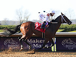 November 7, 2020 : Nashville, ridden by Ricardo Santana, Jr., wins the Perryville Stakes  and sets a track record on Breeders' Cup Championship Saturday at Keeneland Race Course in Lexington, Kentucky on November 7, 2020. Bill Denver/Breeders' Cup/Eclipse Sportswire/CSM