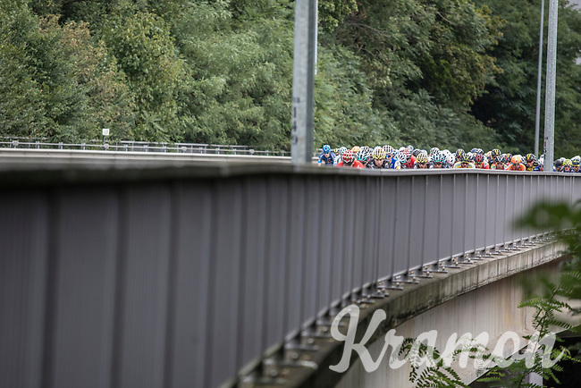 Peloton riding up a bridge<br /> <br /> 51th GP Jef 'Poeske' Scherens 2017 <br /> Leuven - Leuven (13local laps/153.7km)