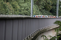 Peloton riding up a bridge<br /> <br /> 51th GP Jef 'Poeske' Scherens 2017 <br /> Leuven - Leuven (13local laps/153.7km)