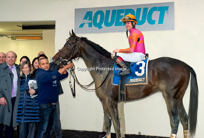 "February 1st, 2020: Max Player [3] in the winners circle with Dylan Davis after winning the G3 Withers Stakes. ""Player"" earned 10 points toward the KY Derby and is trained by Linda Rice. The race was held at Aqueduct Race Track in Ozone New York. Heary/Eclipse Sportswire/CSM"
