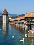 Switzerland, Canton Lucerne: Chapel Bridge and Water Tower - girl feeding swans