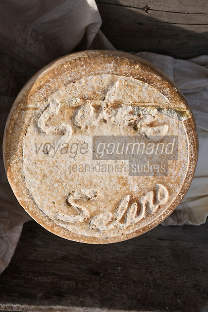 Europe/France/Auvergne/15/Cantal/Pailherols:  Fourme de Fromage Cantal Salers AOC
