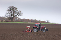19.11.2020 Drilling Winter wheat in Lincolnshire<br /> ©Tim Scrivener Photographer 07850 303986<br />      ....Covering Agriculture In The UK....
