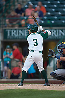 Ethan Skender (3) of the Fort Wayne TinCaps at bat against the Bowling Green Hot Rods at Parkview Field on August 20, 2019 in Fort Wayne, Indiana. The Hot Rods defeated the TinCaps 6-5. (Brian Westerholt/Four Seam Images)
