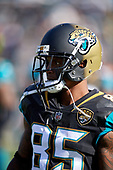 Jacksonville Jaguars Jaydon Mickens (85) during an NFL Wild-Card football game against the Buffalo Bills, Sunday, January 7, 2018, in Jacksonville, Fla.  (Mike Janes Photography)