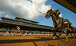 October 07 2018 : Blue Prize with Joe Bravo (outside) defeats Champagne Problems with Calvin Borel to win the Juddmonte Spinster States at Keeneland Racecourse on October 07, 2018 in Lexington, Kentucky. Evers/ESW/CSM
