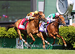 May 3, 2014: Wise Dan with John Velazquez up wins the Woodford Reserve Turf Classic at Churchill Downs in Louisville, KY. Zoe Metz/ESW/CSM