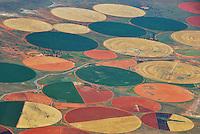 Felder im Kreis: AFRIKA, SUEDAFRIKA, 21.12.2007: Beässerung von großen Flächen in der Wüste Karoo