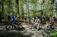 Peter SAGAN (SVN/BORA-Hansgrohe)<br /> <br /> 83rd La Flèche Wallonne 2019 (1.UWT)<br /> One day race from Ans to Mur de Huy (BEL/195km)<br /> <br /> ©kramon