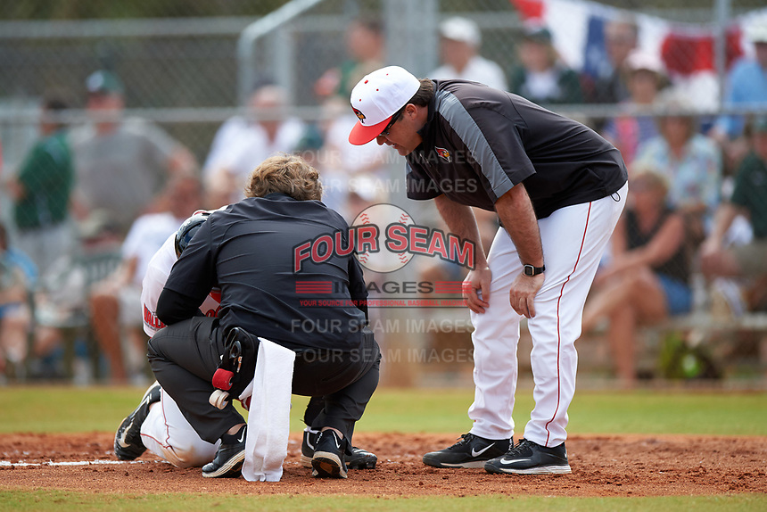 Illinois State Redbirds athletic trainer Andrew Benning and head coach Bo Durkac check on an injured player, Brian Rodemoyer, during a game against the Michigan State Spartans on March 8, 2016 at North Charlotte Regional Park in Port Charlotte, Florida.  Michigan State defeated Illinois State 15-0.  (Mike Janes/Four Seam Images)