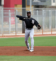 Bryan Ramos - Chicago White Sox 2019 extended spring training (Bill Mitchell)
