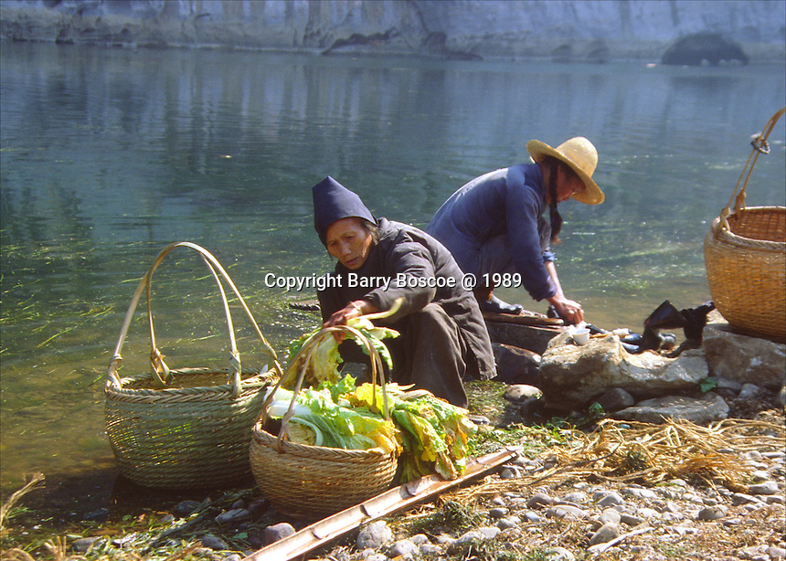 Collecting food from the Li River, Guilin, China