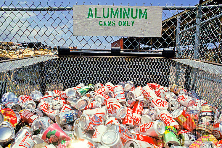 Hundreds of aluminum cans are piled in a metal recycling container.