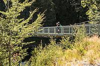 Tramper on swingbridge on start of Routeburn Track, Mt. Aspiring National Park, Central Otago, New Zealand