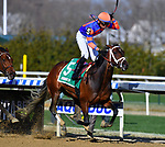 APRIL 06, 2019 : Always Shopping, ridden by Manuel Franco, wins the Gazelle Stakes for 3-year old fillies at Aqueduct Racetrack, on April 06, 2019 in Ozone Park, NY.  Dan Heary/ESW/CSM
