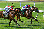 JULY 04, 2021: Original, #5, ridden by Luis Saez , wins the Manila Stakes, going 1 mile on the turf, at Belmont Park in Elmont, New York. Sue Kawczynski/Eclipse Sportswire/CSM