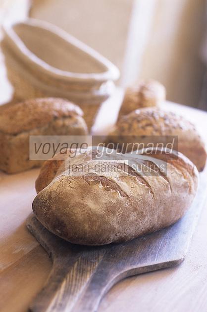 Europe/France/Normandie/Basse-Normandie/61/Orne/La Perrière : Les pains bio de la ferme de la Grande Suardière  //  Europe / France / Normandy / Lower Normandy / 61 / Orne / La Perrière: Organic breads from the Grande Suardière farm