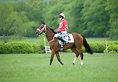 Lake Placid warms up at Great Meadow for new owner Debbie Kachel.