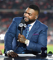 HOUSTON - OCTOBER 29: David Ortiz at World Series Game 6: Washington Nationals at Houston Astros on Fox Sports at Minute Maid Park on October 29, 2019 in Houston, Texas. (Photo by Frank Micelotta/Fox Sports/PictureGroup)