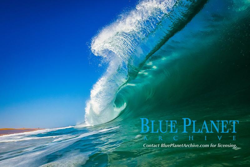 Breaking wave, morning, barrel shaped surf, California.
