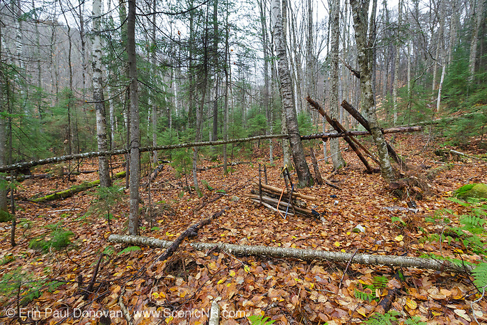 Old campsite along Mack Brook in Livermore, New Hampshire during the autumn months. Proper leave no trace practices should be used when backcountry camping; campers should dismantle campsites once done with them, and pack all trash out of the forest.