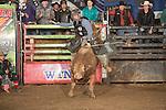 SEBRA - Beckley, WV - 1.16.2016 - Bulls & Action