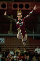 STANFORD, CA-JANUARY 22, 2012 - Shona Morgan executes her beam routine en route to Stanford's win over the visiting University of Washington Gym Dawgs at Burnham Pavilion on the Stanford Campus.