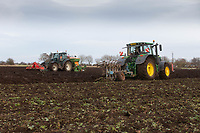 11/1/2021 Ploughing and Drilling Winter Wheat following sugar beet in Cambridgeshire <br /> ©Tim Scrivener Photographer 07850 303986<br />      ....Covering Agriculture In The UK....