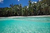 Split level image of Gibney Beach.Virgin Islands National Park.St John.U.S. Virgin Islands