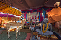 Kumbh Mela 2016 in Ujjain India. This event takes place only every 12 years.