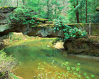 Rock Bridge Arch in the Red River Gorge; Daniel Boone National Forest, KY