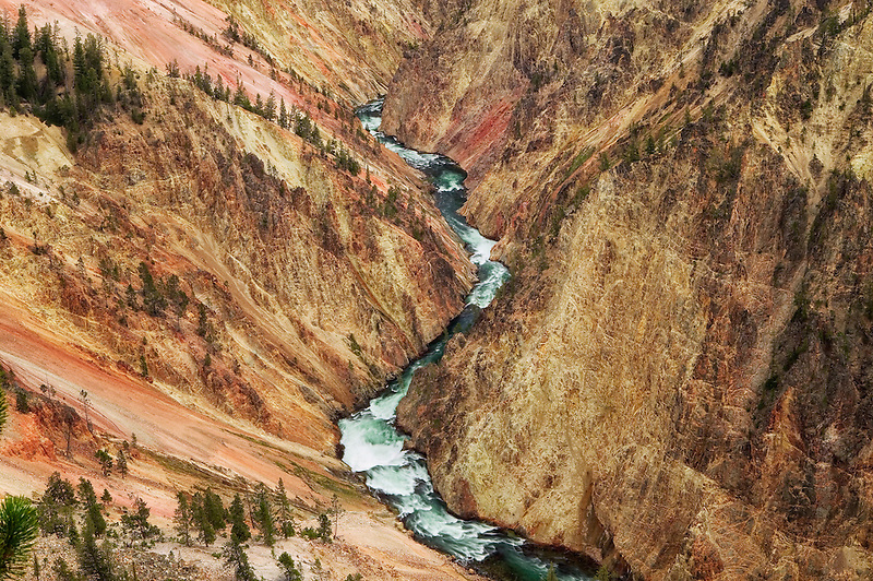 Grand Canyon of the Yellowstone River. Yellowstone National Park, Wyoming