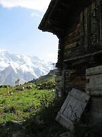 An old barn high in the Swiss Alps